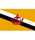 Brunei Courtesy Flag