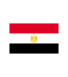 Egypt Courtesy Flag