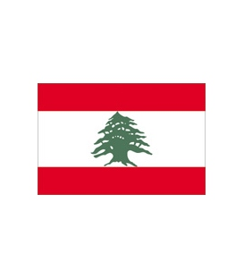 Lebanon Courtesy Flag