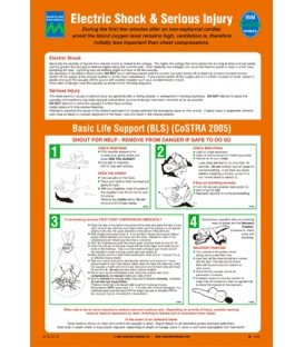 1069 Poster, Electric shock and Serious injury (CoSTRA)