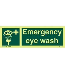 4177 Emergency eye wash