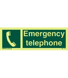 4178 Emergency telephone