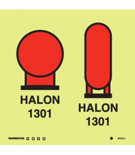 6050 Halon 1301 bottles in a protected area